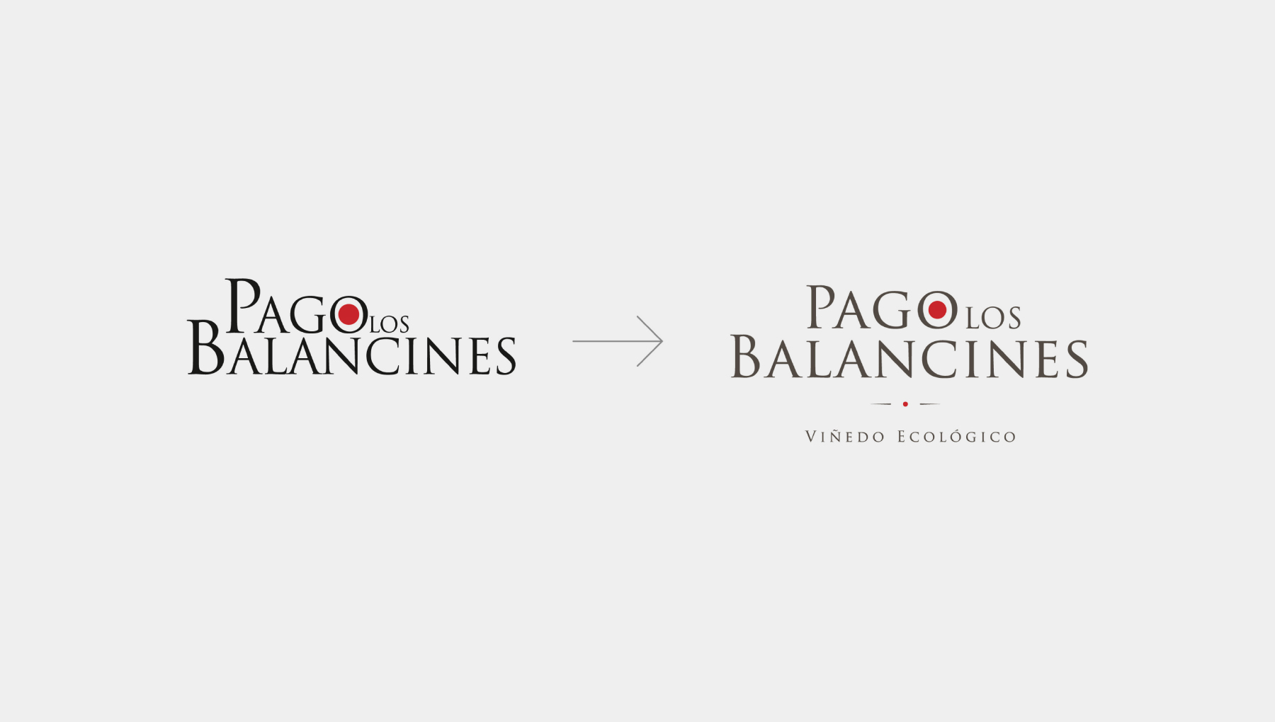 logo evolucion y branding para bodega