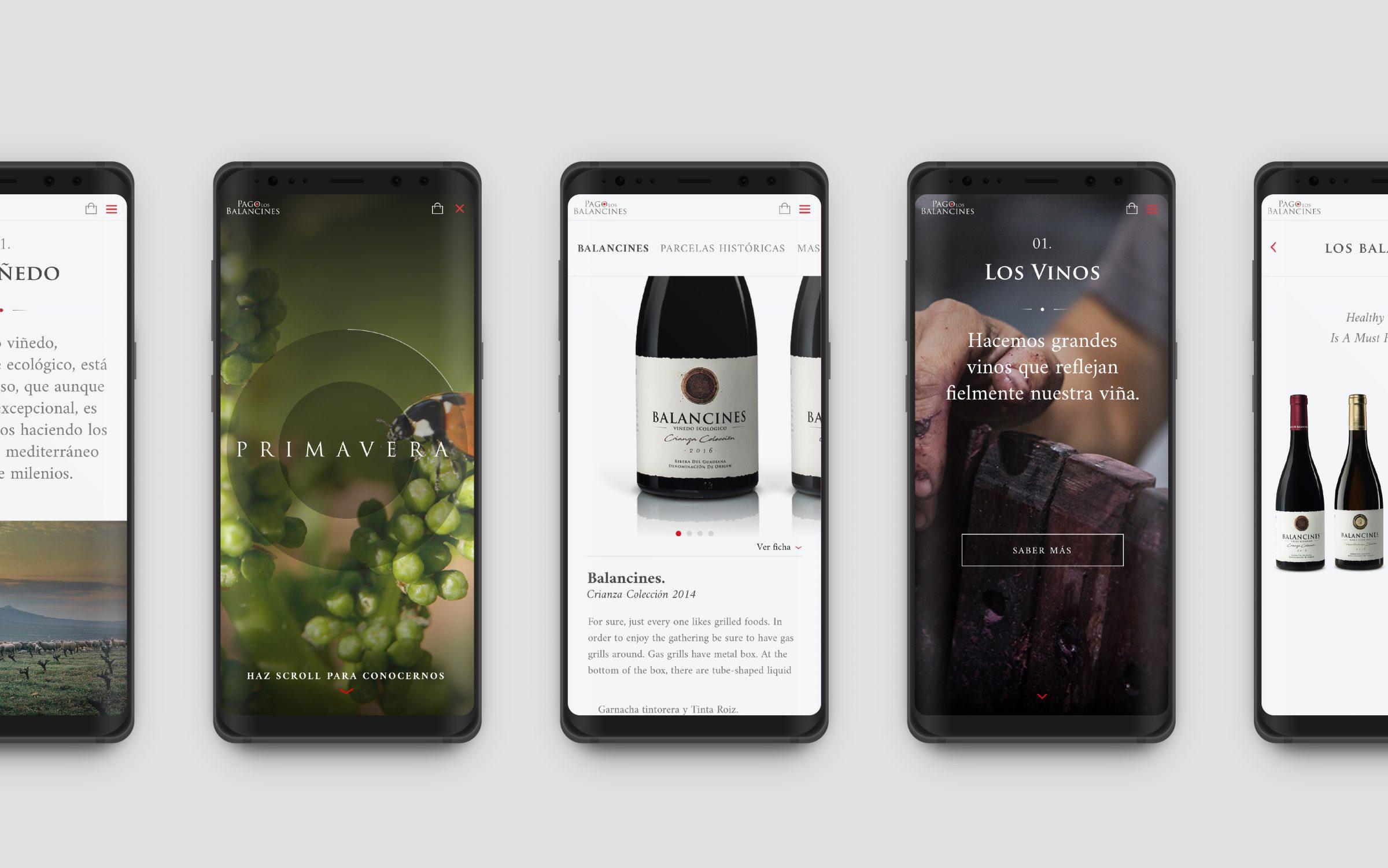 diseño tienda online de bodega en merida